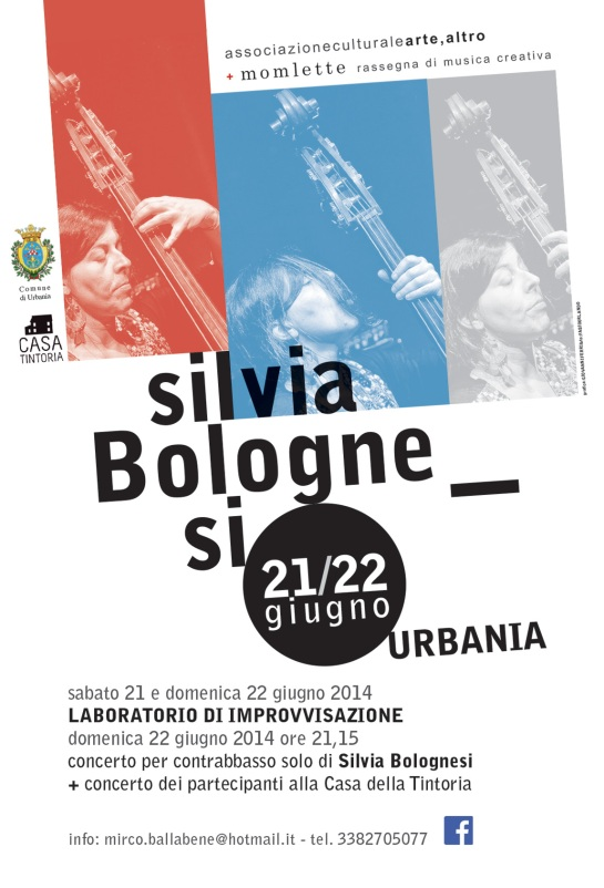 silvia-bolognesi-lab-2014